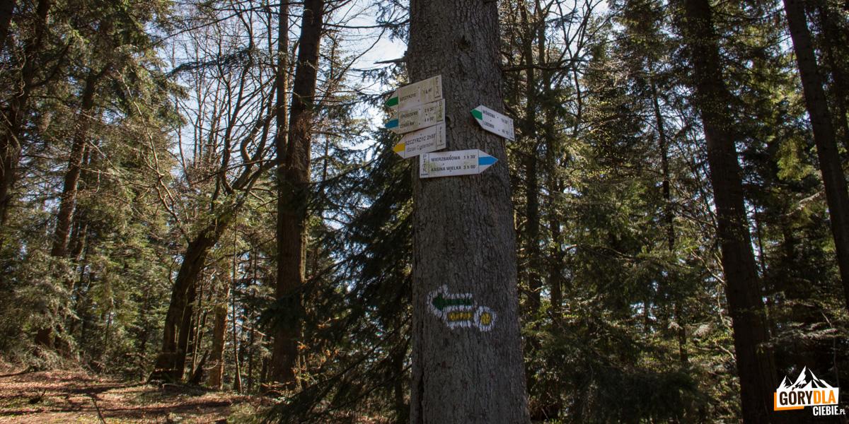 Drogowskazy szlaków na szczycie Cietnia