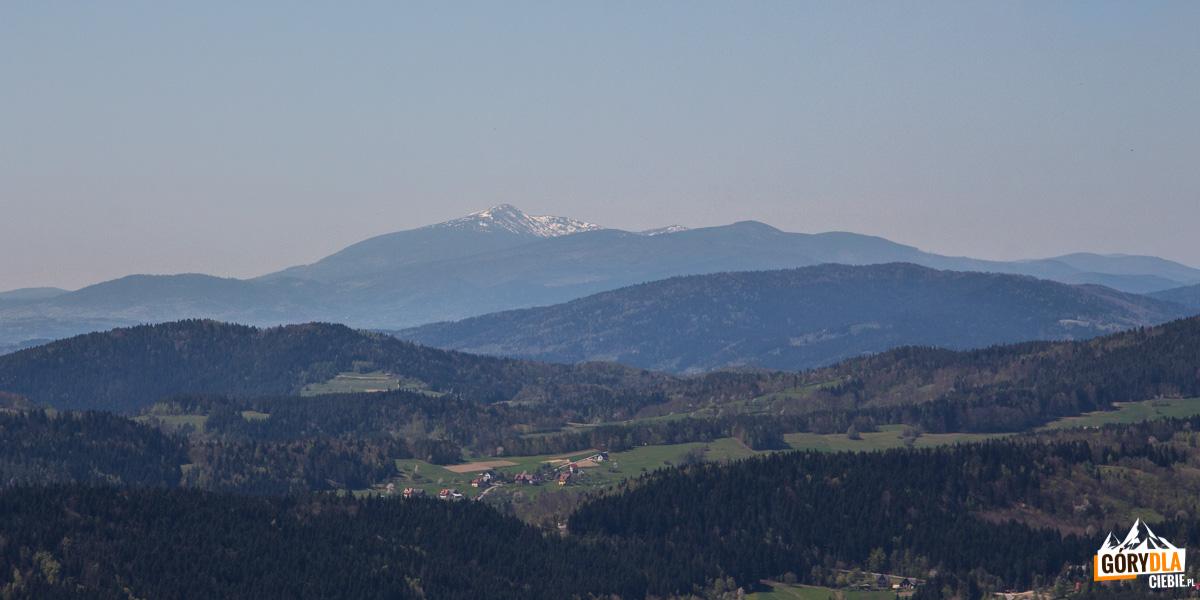 Babia Góra widziana z polany pod szczytem Cietnia