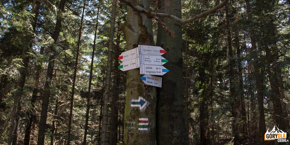 Drogowskazy szlaków na Cietniu Wschodnim