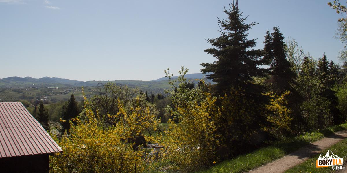 Widoki z zielonego szlaku ze Szczyrzyca na Ciecień