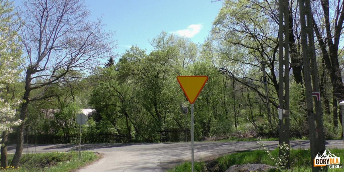 Główna droga do Skrzydlnej