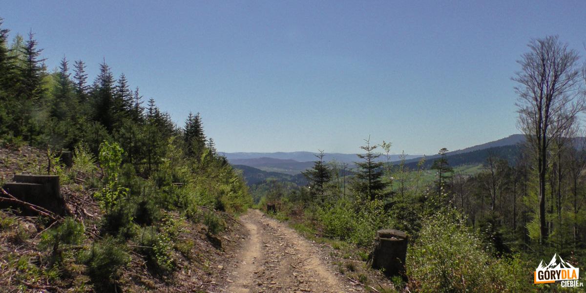 Punkt widokowy na Gorce i Tatry na trzie czerwonego szlaku z Cietnia do Skrzydlnej