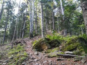 Szczebel - wychodnie skalne