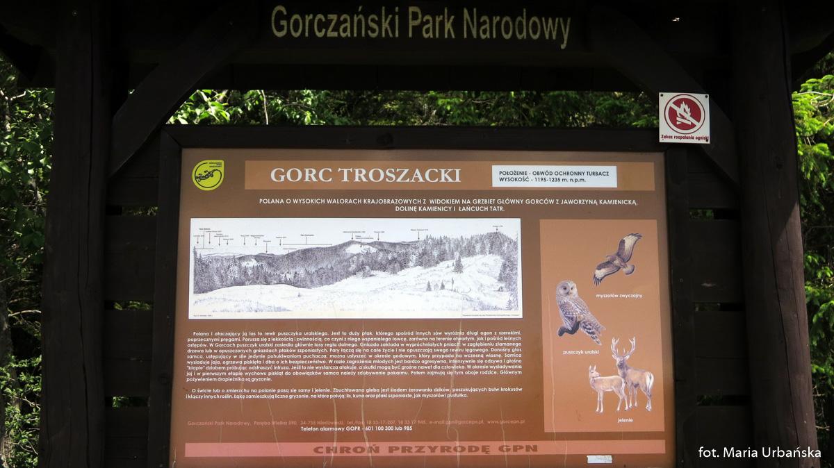 Gorc Troszacki