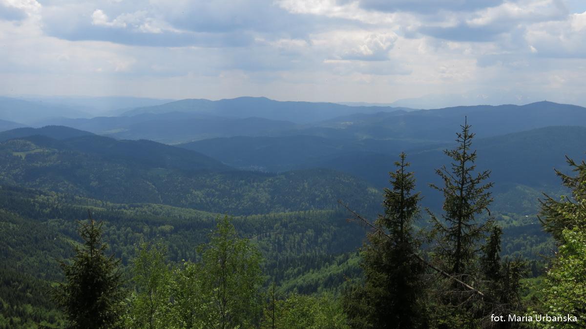 Widok na Gorce (Lubań i Gorc) spod Mogielicy