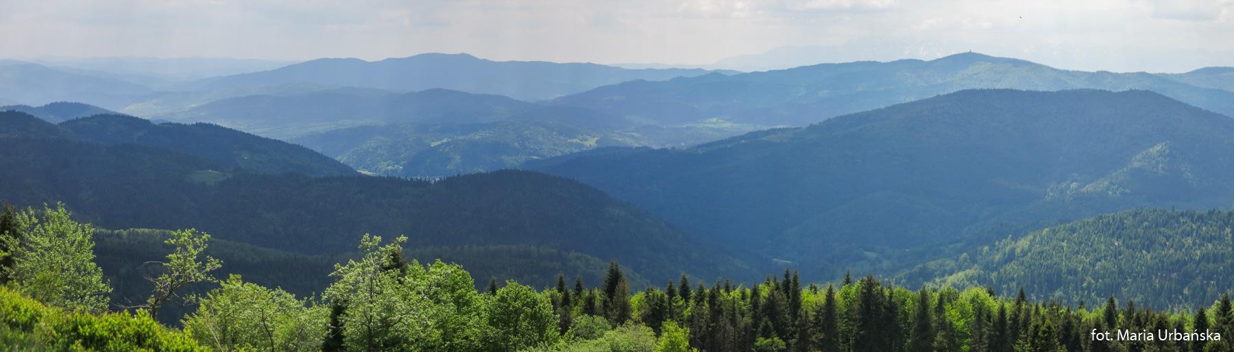 Panorama Gorców (Lubań, Gorc) i Tatr spod Mogielicy