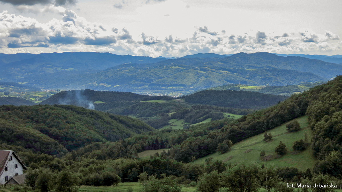 Widok z podejścia na Modyń na Pasmo Przehyby i Radziejowej, Pieniny i Lubań