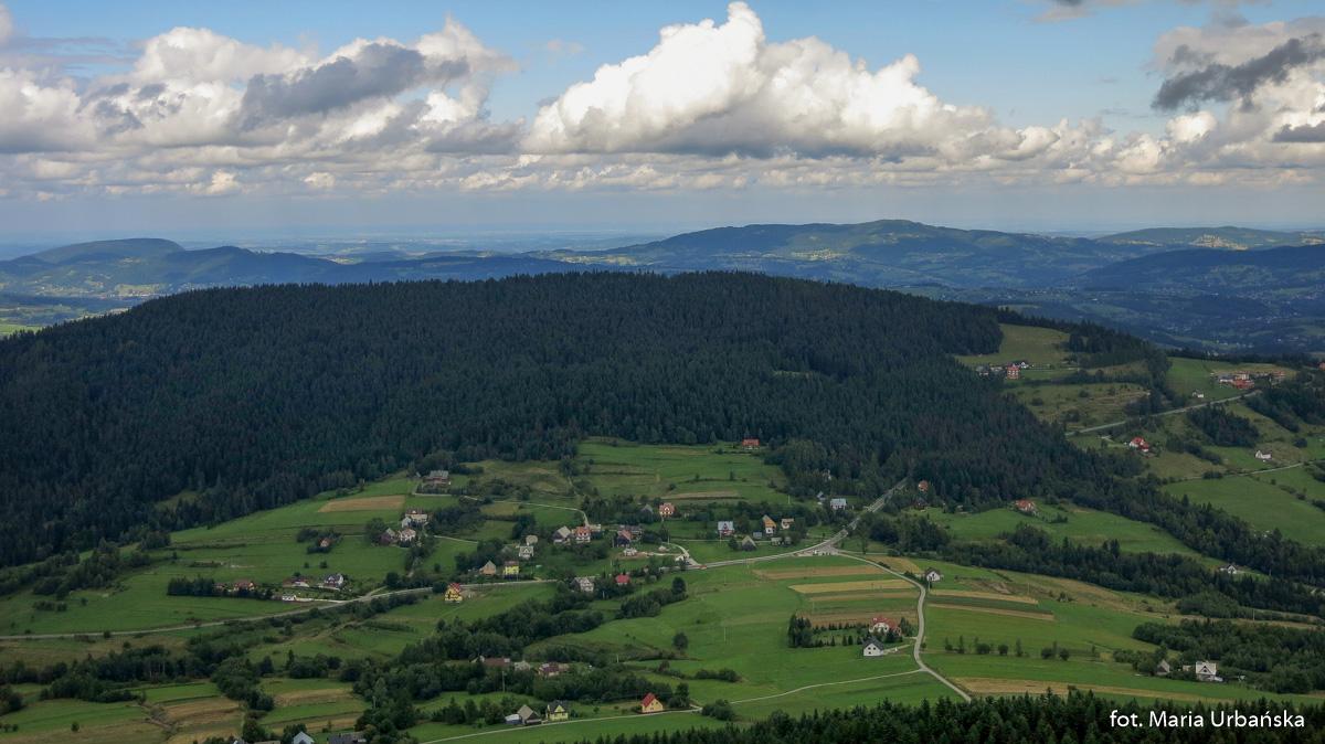 Widok z wieży na Modyni na Cichon (926 m) i Przełęcz pod Ostrą